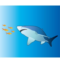 shark and tropical fishes vector image