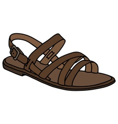 Leather low sandal vector image