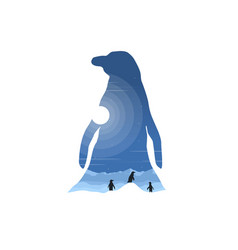 Inside silhouette of penguin on the hill at night vector