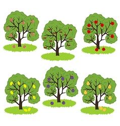 Fruit Tree Icon vector image