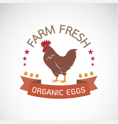label with the chicken on a white background farm vector image