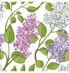 Seamless pattern with lilacs vector image vector image