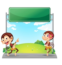 Two playful monkeys in front of the empty green vector image vector image