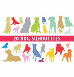 20 dogs different set designed in vintage style vector image