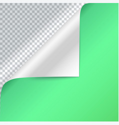 Curled corner of green paper page curl vector