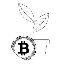 Growth price bitcoin vector