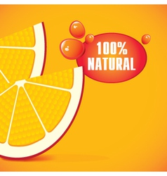 natural juice vector image