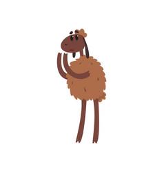 Sad funny sheep character cartoon vector