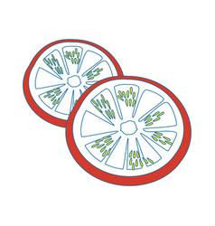 Tomato slice cartoon vector