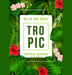 tropical summer exotic palm leaf and flower banner vector image