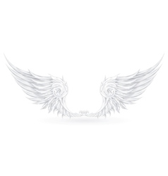 Wings White vector