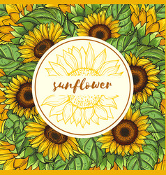 background with sunflowers and place vector image