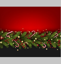 christmas background with fir branch and holly vector image