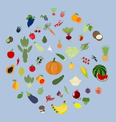 Fruit Vegetable Set vector