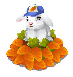 Hare in cap sits in pile of carrots easter symbol vector