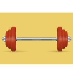 Realistic barbell for fitness classes vector