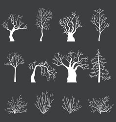 set white silhouettes bare trees and bushes vector image