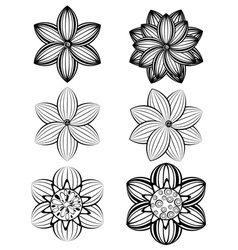 Simple Black and White Flowers2 vector