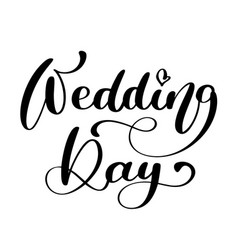 wedding day text on white background vector image