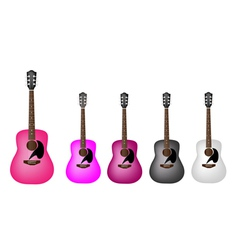 Set of Beautiful Acoustic Guitars vector image