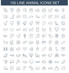 100 animal icons vector