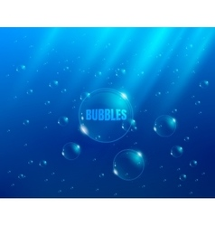 Bubbles blue background vector image