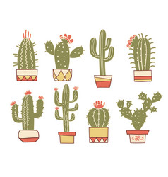 cactuses floral hand drawn vintage cactuses in vector image