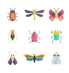 Colorful Bugs vector image