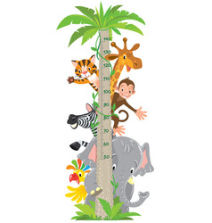 giraffe monkey tiger meter wall or height chart vector image