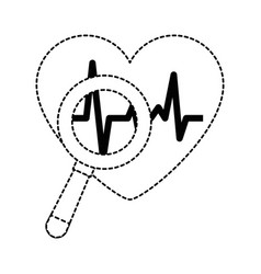 heart cardiology with magnifying glass vector image