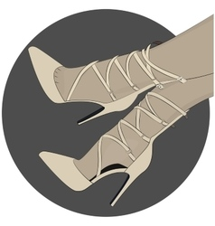 laceup shoes heels vector image