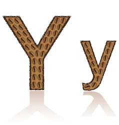 letter y is made grains of coffee isolated on whit vector image vector image