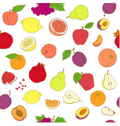 outline hand drawn seamless colorful fruit vector image