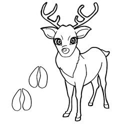 Paw print with deer coloring pages vector