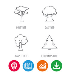 pine tree maple and oak-tree icons vector image