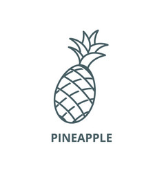 pineapple line icon linear concept vector image