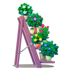 Set of decorative plants in pots on stairs shelves vector