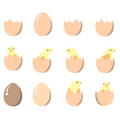 set of eggs and chickens vector image