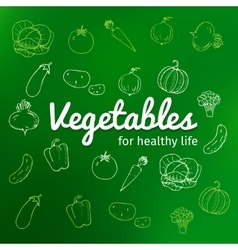 set of vegetables hand drawn text vegetables vector image