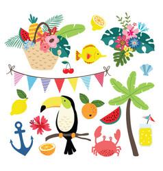 Summer tropical graphic elements toucan bird vector