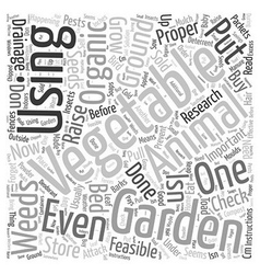 What Is Organic Vegetable Gardening Word Cloud vector