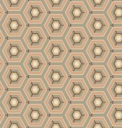 vintage pattern hexagon vector image vector image