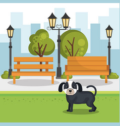 Cute dogs in the park scene vector