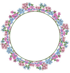 Floral wreath phlox flowers isolated on white vector