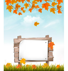 nature autumn background with a colorful leaves vector image