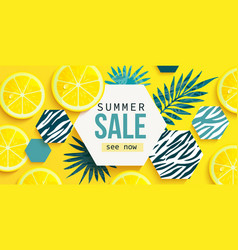 summer sale horizontal banner bright invitation vector image