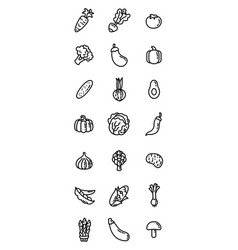 thin line flat food icons vegetables vector image