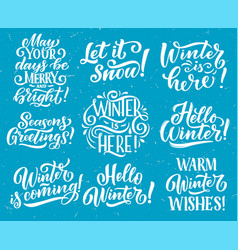 Winter seasonal holiday quote lettering vector