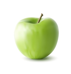 green apple isolated on white background vector image vector image