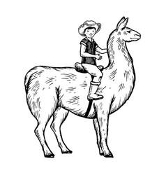 child ride on llama engraving vector image